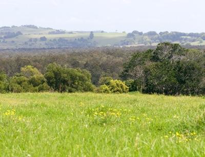 Urbex NSW Image